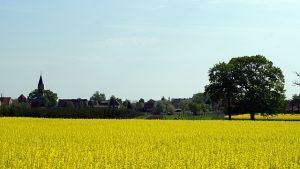 Calenberge_Mai_2012-2